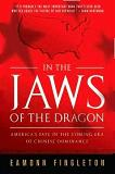 In the Jaws of the Dragon book by Eamonn Fingleton