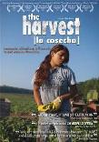 The Harvest / La Cosecha documentary film about child labor in America